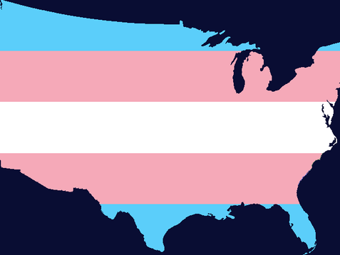 Protecting Transgender Employees in the Workplace: Landmark Legal Precedents