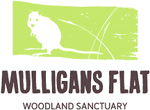 Mulligans Flat.png