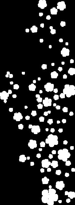 授与品桜1.png