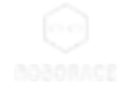 Roborace_logo.png