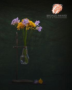 flower 3 APRIL HIGH BRONZE WEB.jpg