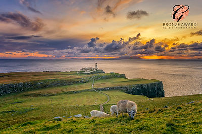 NEIST POINT 2 BRONZE FEB.jpg