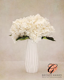 vase1 HIGH BRONZE JULY 20.jpg