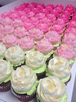 Cupcakes 3 couleurs