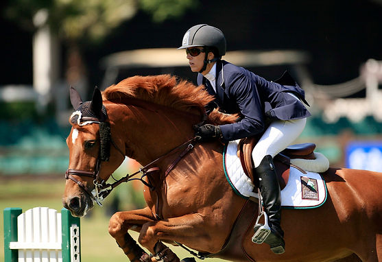 Susan Artes Stables Grand Prix show jumping training