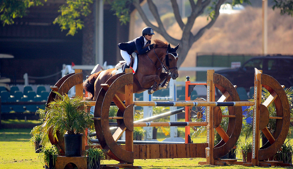 Susan Artes Stables Grand Prix jump rider and trainer
