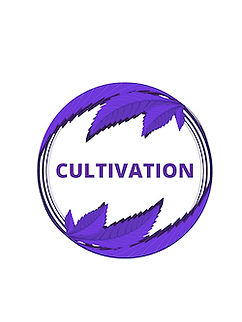 CULTIVATION ICON.jpg