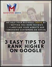 """Get our Free PDF """"How Can I Rank My Business in the Google 3 Pack"""""""
