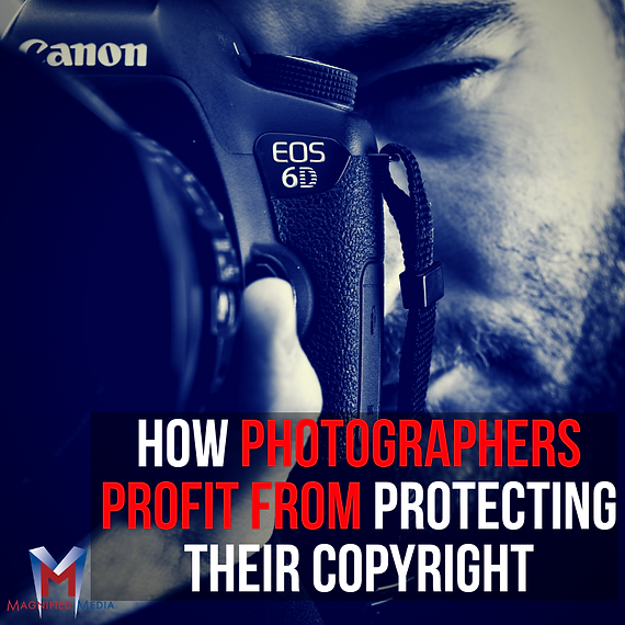 How Photographers Profit from Protecting