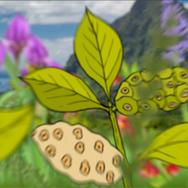 20EVO Explainer Animation 10