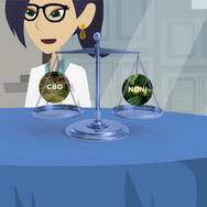 20EVO Explainer Animation 3