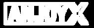 AnjoyX Logo