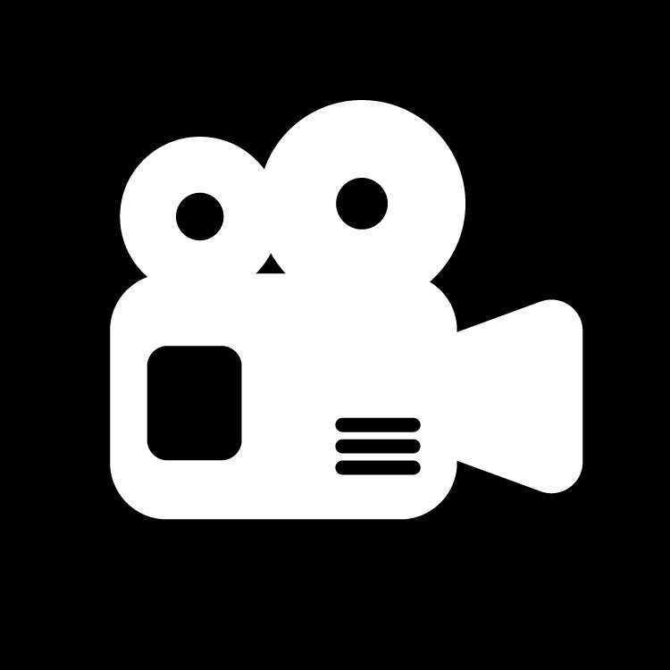 Videography Consultation