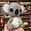 Thumbnail: Koala ~Medium