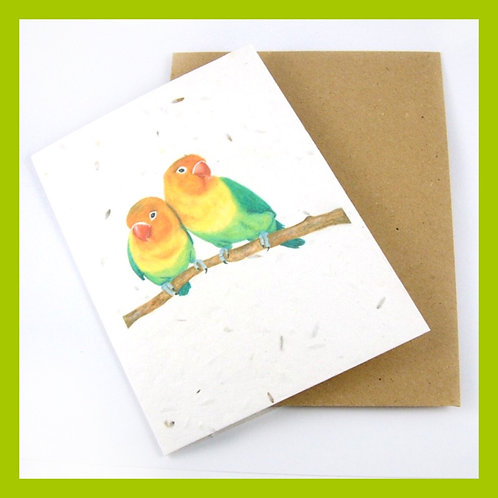 Eco Friendly Seeded Greetings Cards