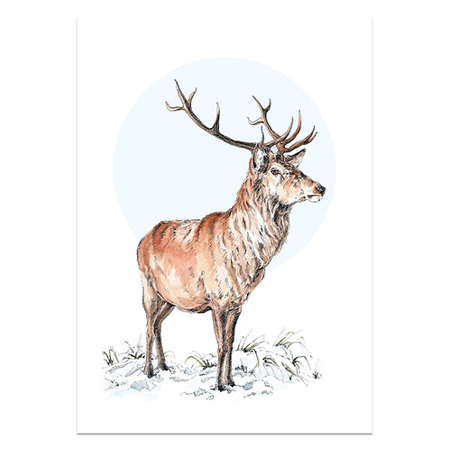 Winter Stag Print