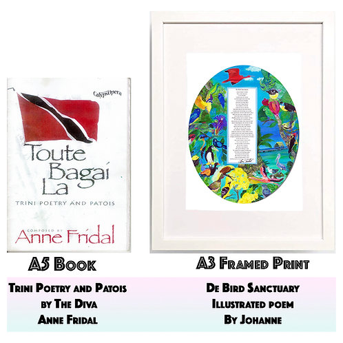 De Bird Sanctuary Print and Book Toute Bagai La