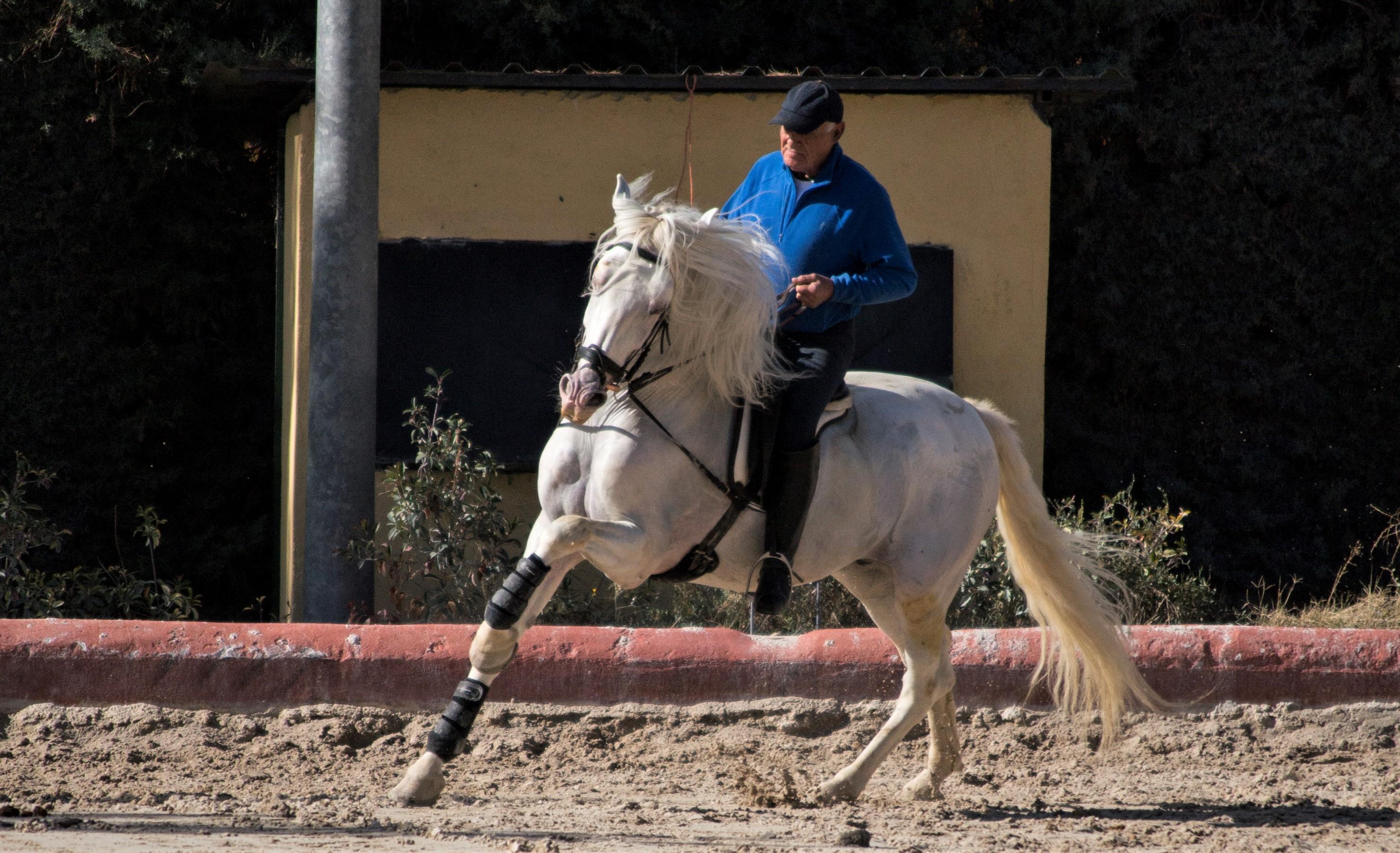 Julio con Guerrero 2