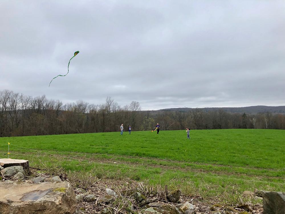Kids flying kites at Hidden Blossom Farm