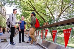 Students Collaborating at McGill Univers