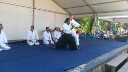 Aikido Cape Town