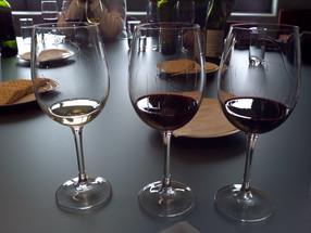 """Vinho, um """"novo"""" prazer (do) brasileiro"""
