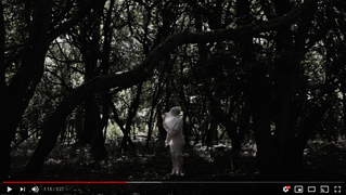 """Ancestral"" - new video by Zola Mennenöh"