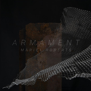 Armament by Mariel Roberts OUT NOW!