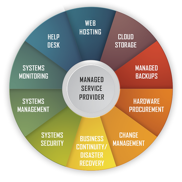 Managed-Service-Providers-01.png