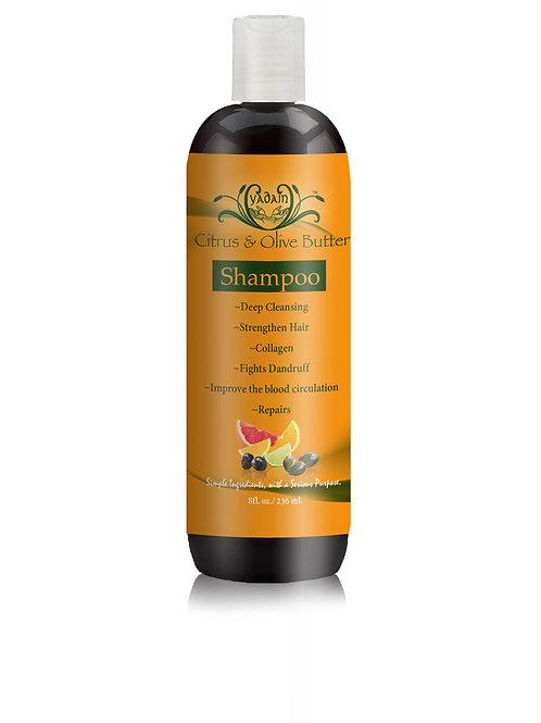Signature Shampoo: Citrus & Olive Butter (8oz)
