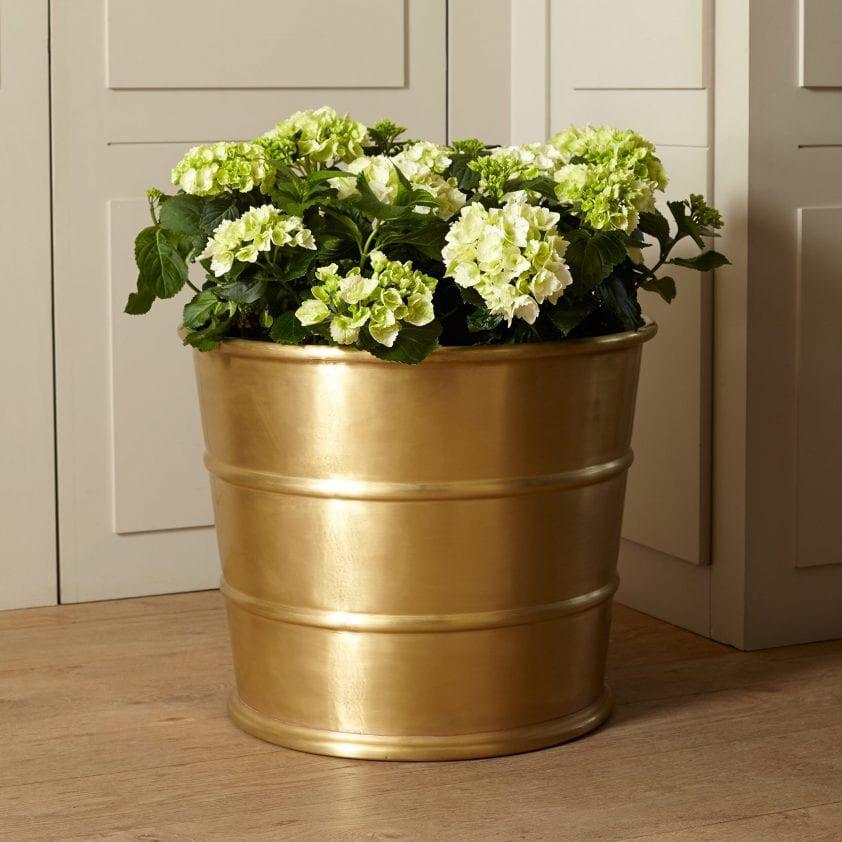 Brass ribbed designer planter Bronzino