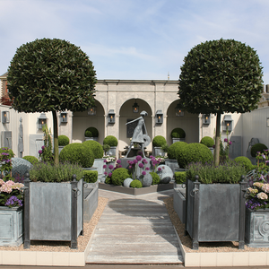 Two large zinc square planters with bay trees and lavender