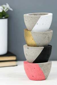 How to decorate with plant pots, concrete plant pot with succulent