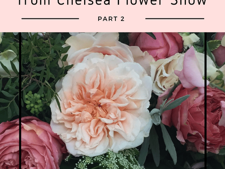 My 10 takeaways from Chelsea Flower Show 2017 (Part 2)