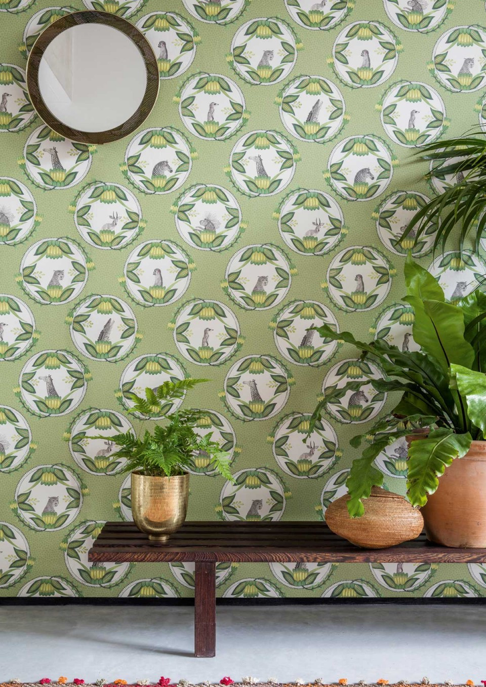 Botanical wallpaper Ardmore Cole and Son