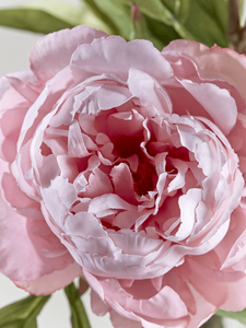 Faux Pink Peony close up