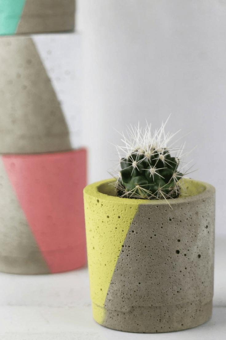 How to decorate with plant pots, concrete plant pot with succulent