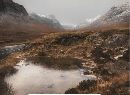Highland Myths Living Room Decor