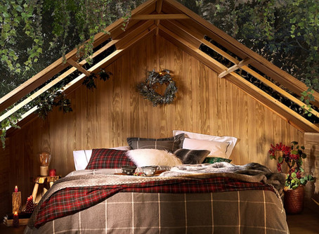 Traditional Christmas Decor (or how to decorate a cabin)