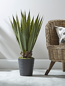 Faux Tall Agave on the floor next to a rattan chair