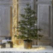 Christmas tree wth snow