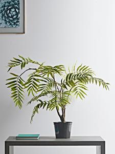 Faux Mesquite plant on a console table