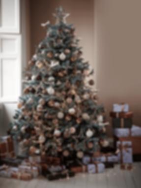 Christmas tree Blue Mountain