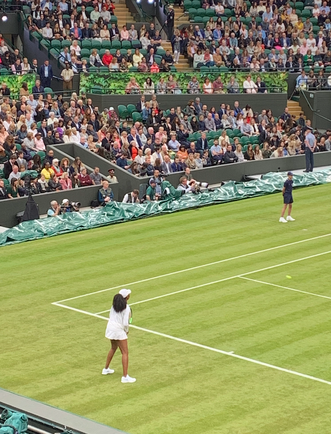 Venus Williams - Wimbledn Centre Court