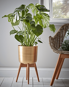 How to decorate with plant pots, mid century plant pot stand