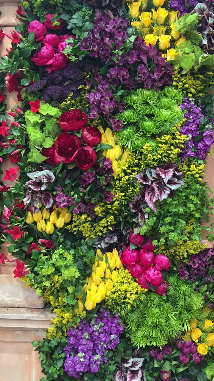 A wall planted with flowers for Chelsea Flower Show