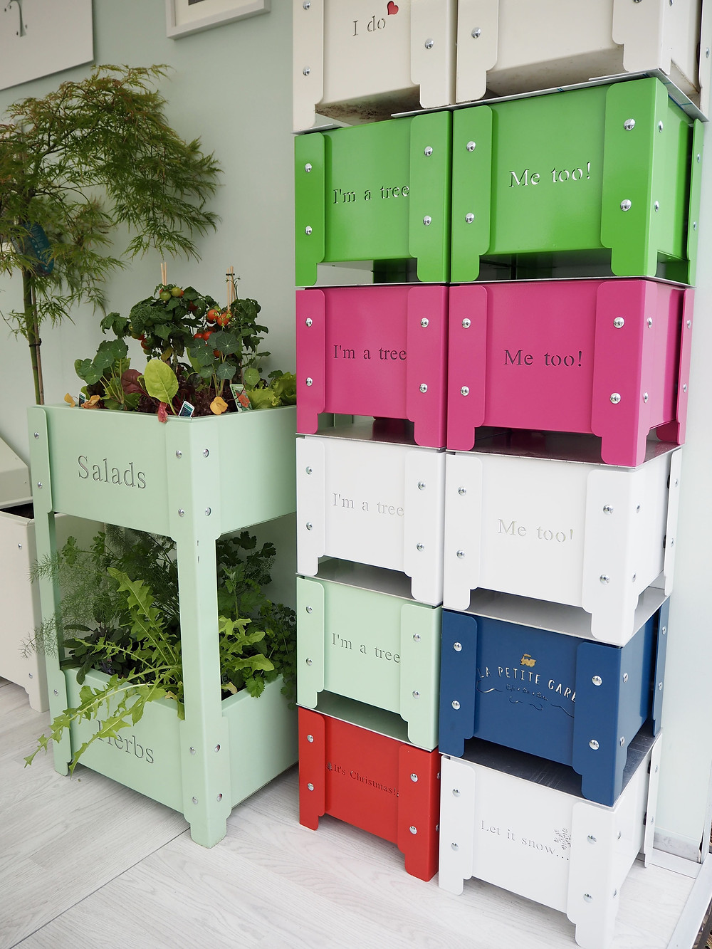 Colourful galvanised planters from Amelie Design