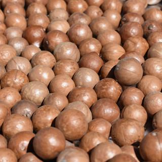 Dehusked macadamia nuts