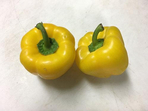Organic Yellow Pepper / 1 lb
