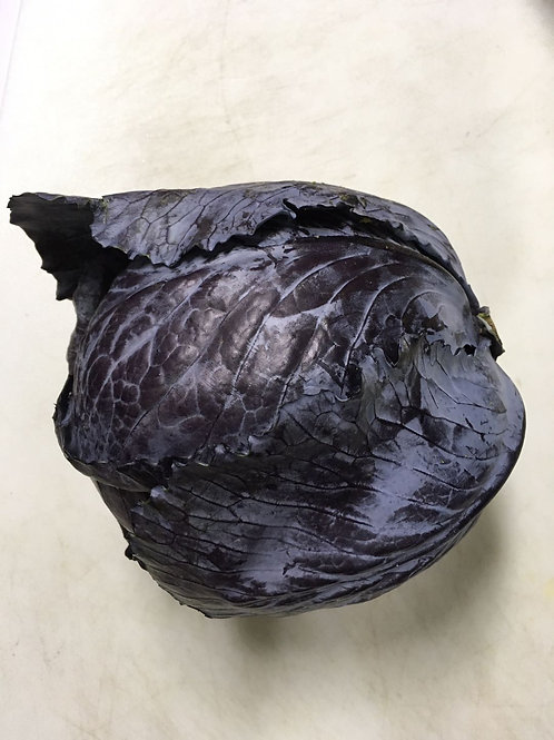 Organic Red Cabbage / 2 lbs